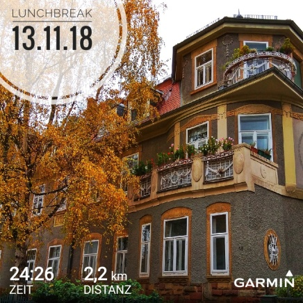 GarminConnect_20181113-135138-01.jpeg
