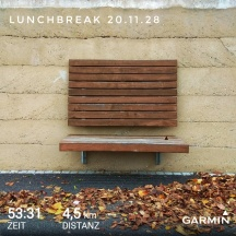 GarminConnect_20181120-140322-02.jpeg